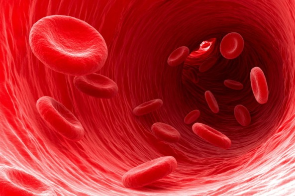 healthy-red-blood-cells